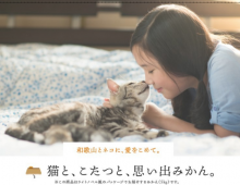 【國外案例分享】一家雞肉店,竟然讓貓咪賣起了橘子?